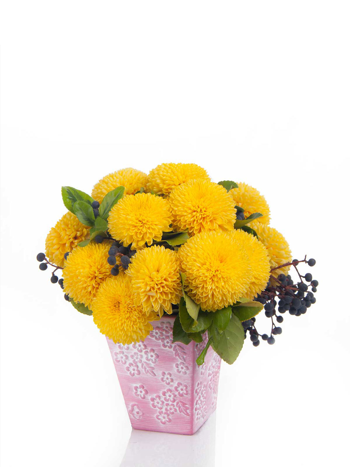 How to make pompomsunflower bouquet flower boutiques in toronto wild chrysanthemum taxa are floral seasonal plants or subshrubs they have alternately arranged leaves divided into leaflets with toothed or occasionally izmirmasajfo
